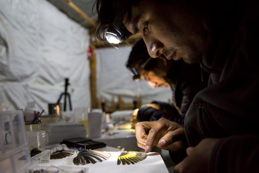 PeruExpedition 2018 Omar prep at night by Sam